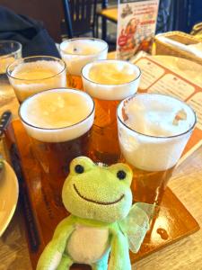 ビール5種飲み比べセット