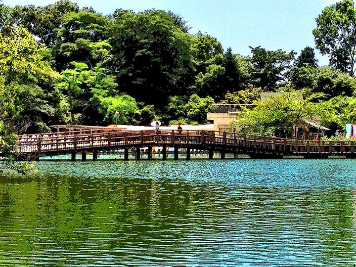 InokashiraPark20120730